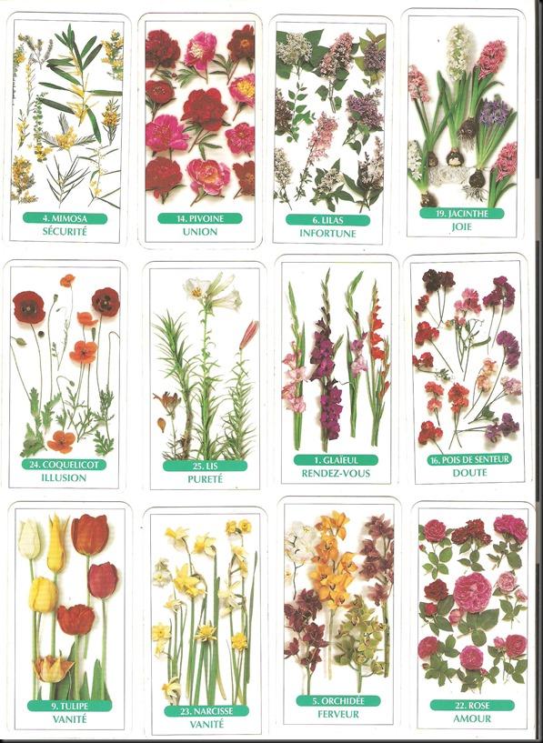 tarot des fleurs 2